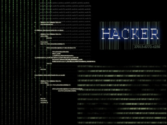 15-year-old hacks 259 websites in just 3 months