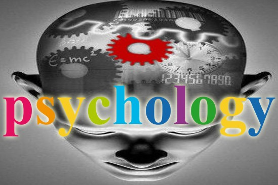academic field that studies the human mind and behavior