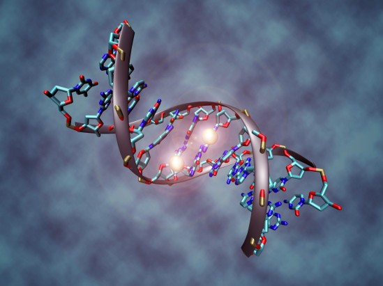 Study finds epigenetics, not genetics, underlies homosexuality